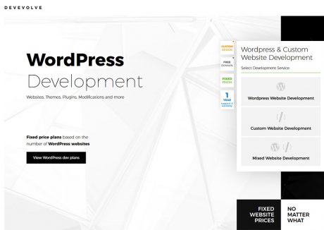 Devevolve – WordPress Plans