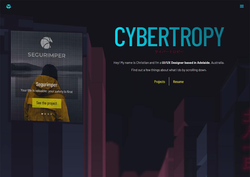 Cybertropy