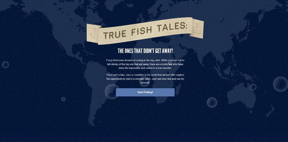 True Fish web design inspiration