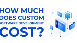 How much does a Custom Software Development Cost?