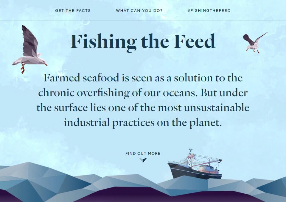 Fishing the Feed