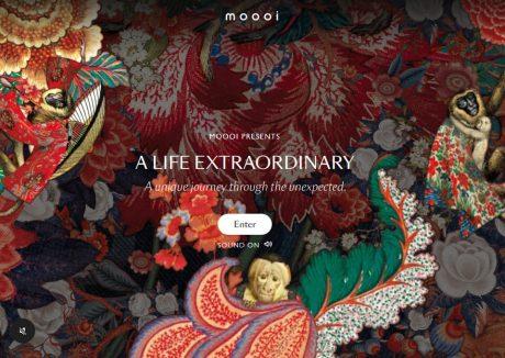 Moooi – A Life Extraordinary
