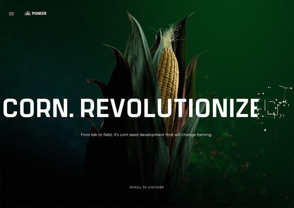 Pioneer – Corn Revolutionized