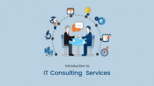 Introduction to IT Consulting  Services