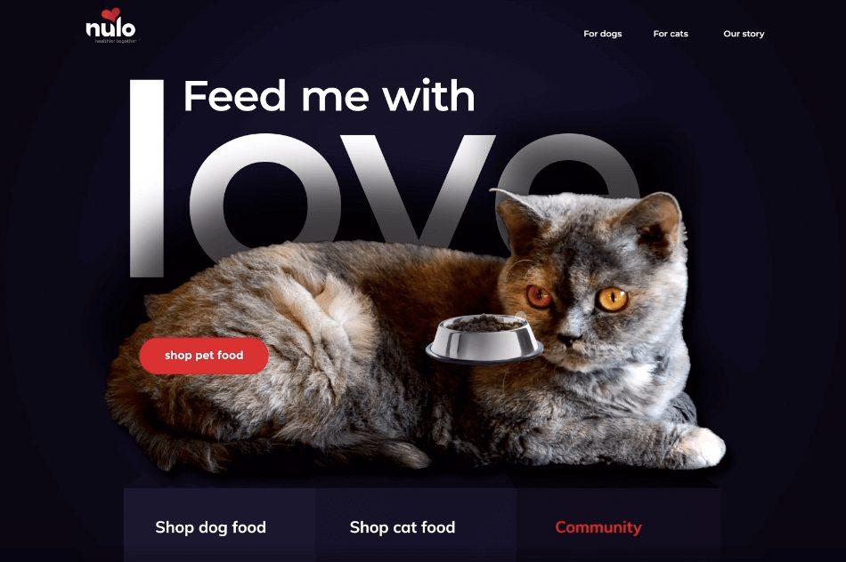 Pet Food Website Concept