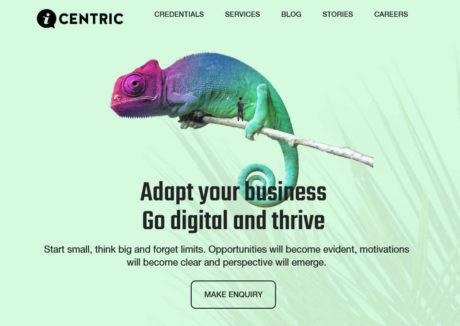 iCentric – Digital Agency