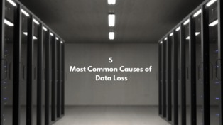 A Guide on the 5 Common Reasons for Data Loss in Businesses
