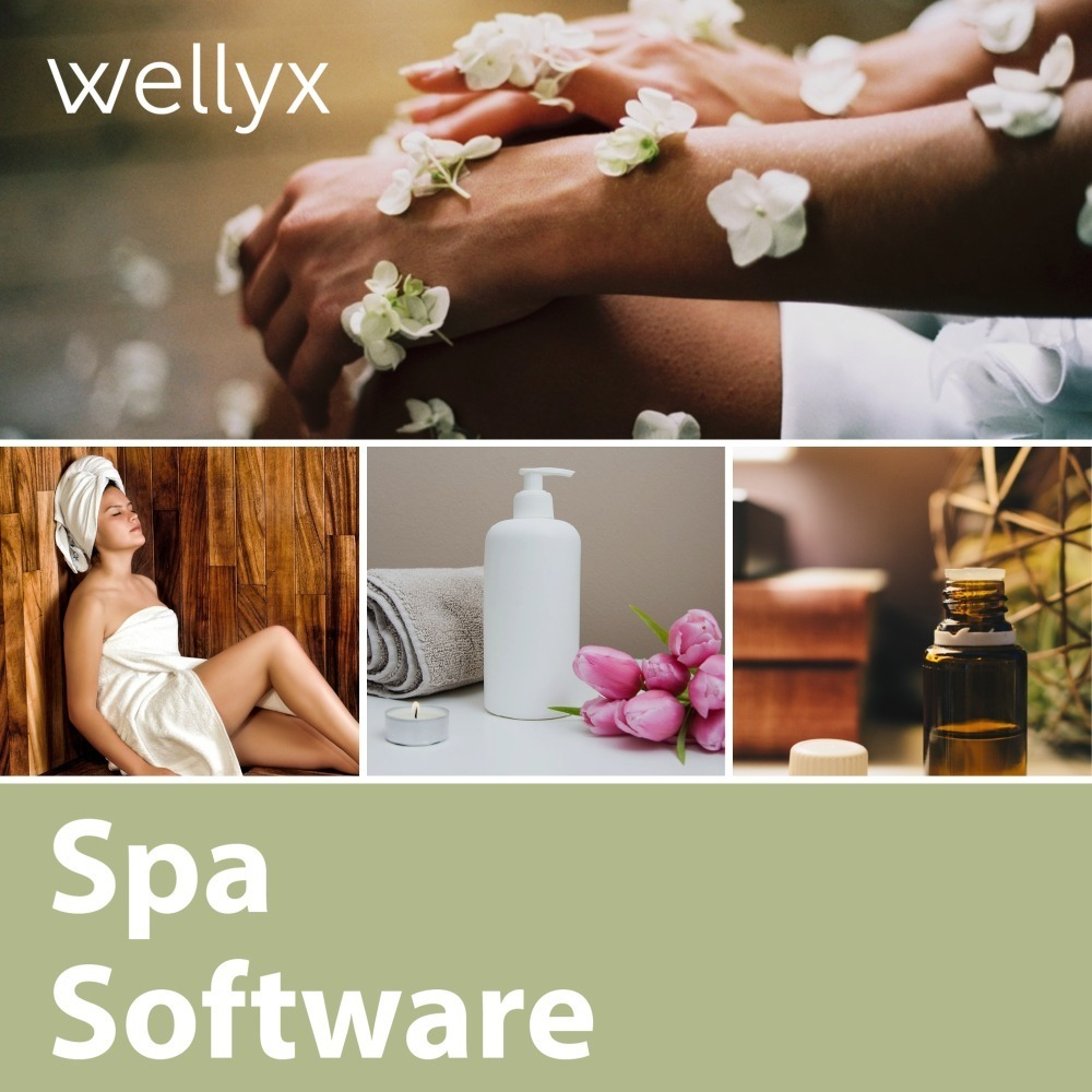 What is the Importance of Software in Spa Business?