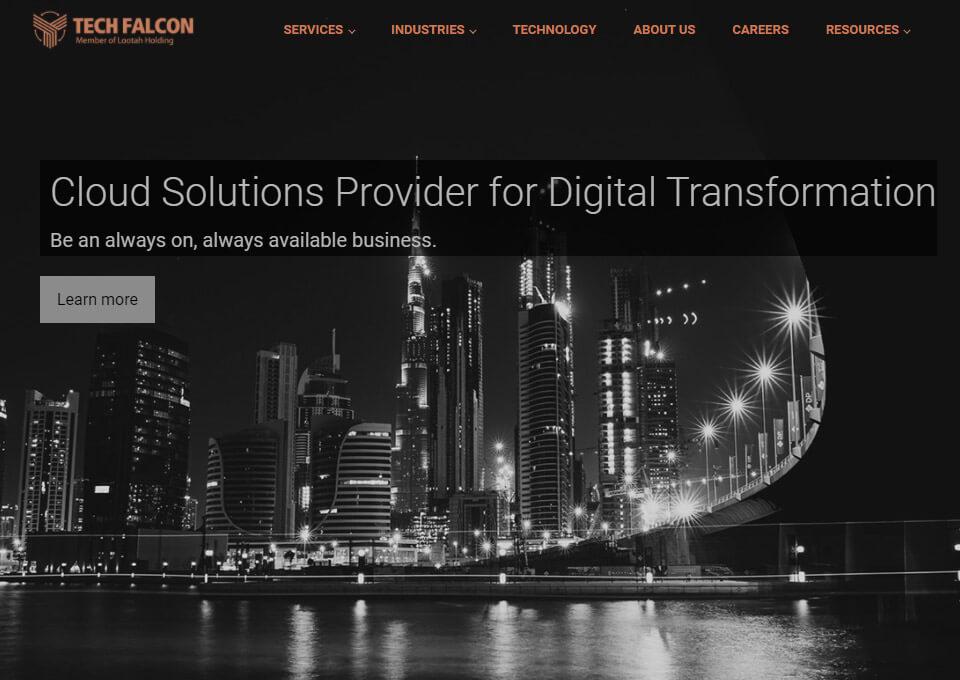 Tech Falcon LLC