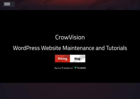 CrowVision